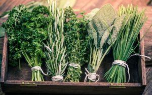 15 x eten kruiden zonder een opgeblazen gevoel